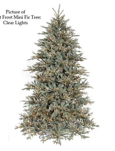 Frost Mini Fir Christmas Tree For Christmas 2014