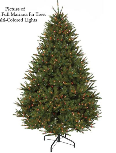 Full Mariana Fir Christmas Tree For Christmas 2014