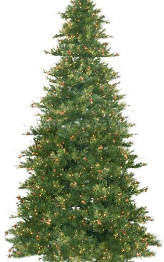 Vickerman A801696 14 x 85 Slim Mixed Country Pine 2700CL (Christmas Tree)