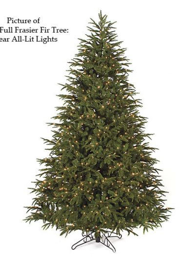 Full Frasier Fir Christmas Tree For Christmas 2014