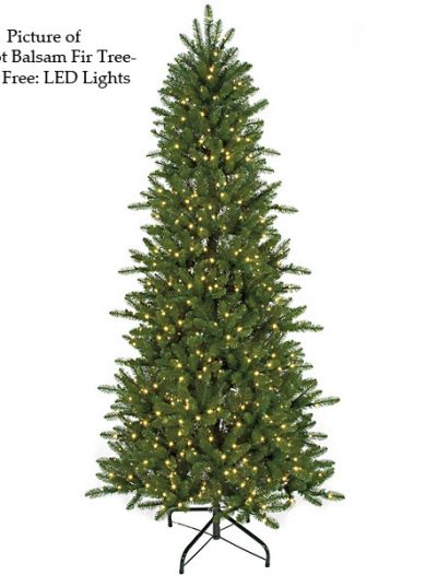 Fluff Free Slim Balsam Fir Christmas Tree For Christmas 2014