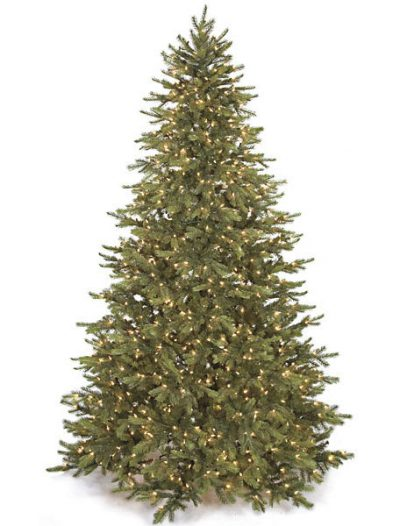 Mountain Fir Christmas Tree For Christmas 2014