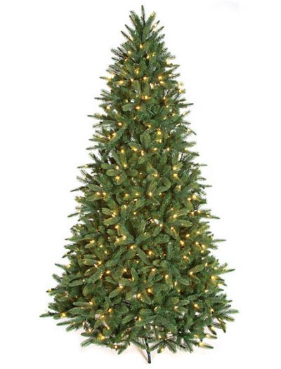 Kennedy Fir Christmas Tree For Christmas 2014