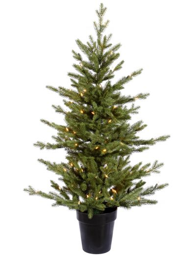 Cason Fraiser Fir Christmas Tree For Christmas 2014