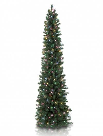 7' Balsam Hill Sonoma Slim Pencil Artificial Christmas Tree - Clear (Christmas Tree)