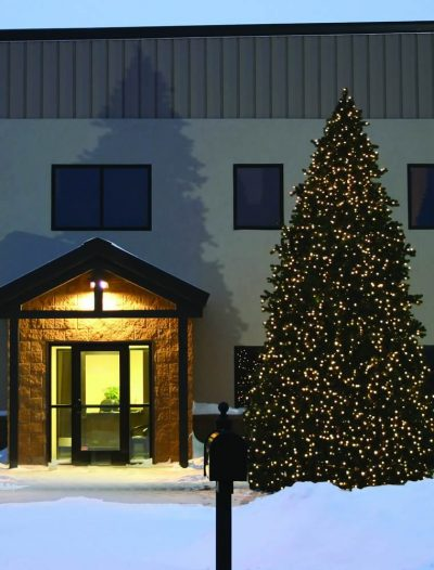Grand Teton Outdoor Commercial Christmas Tree For Christmas 2014