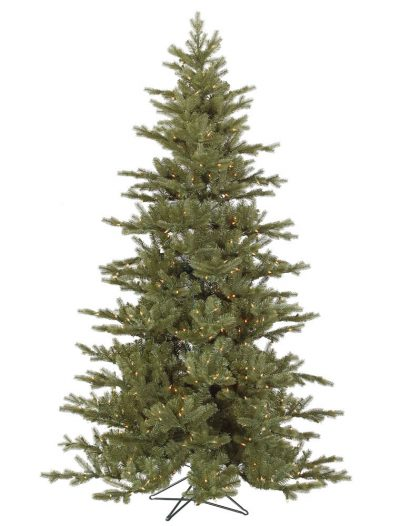 Full Austrian Fir Christmas Tree For Christmas 2014