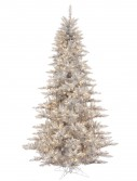 Silver Fir Christmas Tree For Christmas 2014