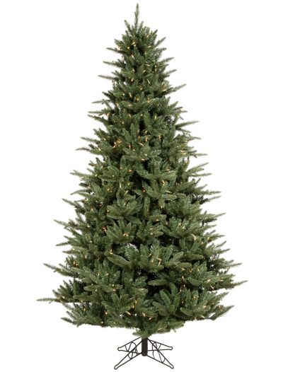 Catalina Frasier Fir Christmas Tree For Christmas 2014