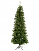 Salem Pencil Pine Christmas Tree For Christmas 2014