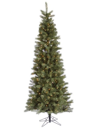 Slim Blue Albany Spruce Christmas Tree For Christmas 2014
