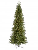 Slim Albany Spruce Christmas Tree For Christmas 2014