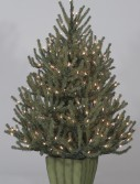 Classics 4' Baby Spruce Potted Artificial Christmas Tree (Christmas Tree)