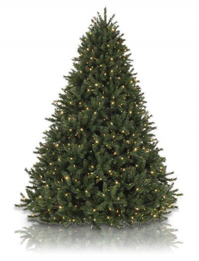 Classics 5.5' Rocky Mountain Pine Artificial Christmas Tree Light Color: Clear (Christmas Tree)