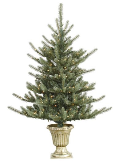 5 foot Potted Colorado Blue Spruce Christmas Tree with Dura-Lit Lights For Christmas 2014