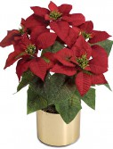 19 inch Red Poinsettia Bush: Set of (12) For Christmas 2014