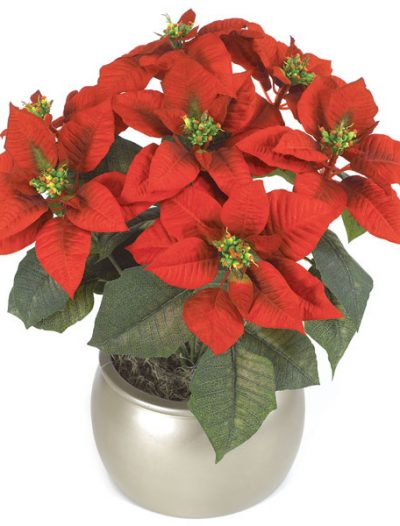 23 inch Poinsettia Bush with Red Flowers: Set of (6) For Christmas 2014