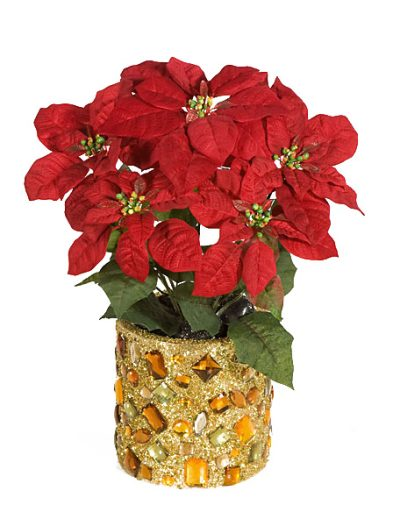 18 Inch Poinsettia Bush: Set of (12) For Christmas 2014