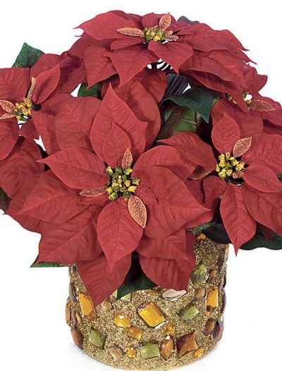 18 Inch Poinsettia Bush: Set of (6) For Christmas 2014