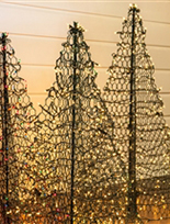 Crab Pot Trees Fisherman Creations 4 ft. Artificial Christmas Tree- Folds Flat with Incandescent Clear Lights G4C (Christmas Tree)