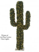 Pine Cactus For Christmas 2014
