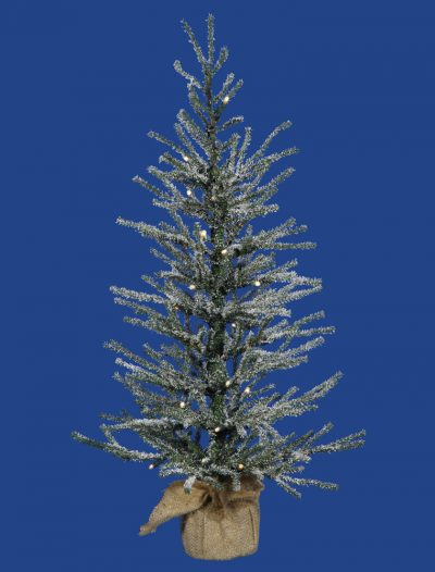 Frosted Angel Pine Christmas Tree For Christmas 2014