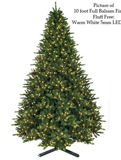 Fluff Free Full Balsam Fir Christmas Tree For Christmas 2014