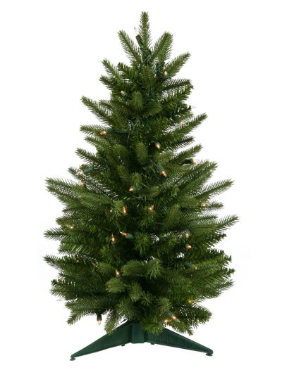 Frasier Fir Christmas Tree For Christmas 2014