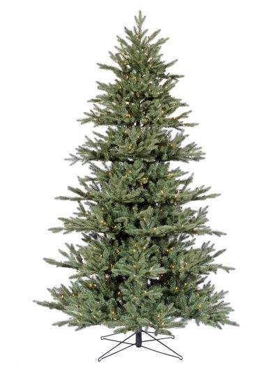 Medium Blue Noble Fir Christmas Tree For Christmas 2014