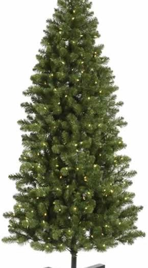 Vickerman G125081LED 9.5 ft. x 53 in. Slim Grand Teton 1000WmWhtLED (Christmas Tree)