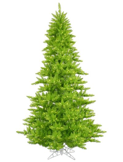 Lime Fir Christmas Tree For Christmas 2014