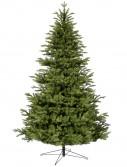Norwood Fir Christmas Tree For Christmas 2014