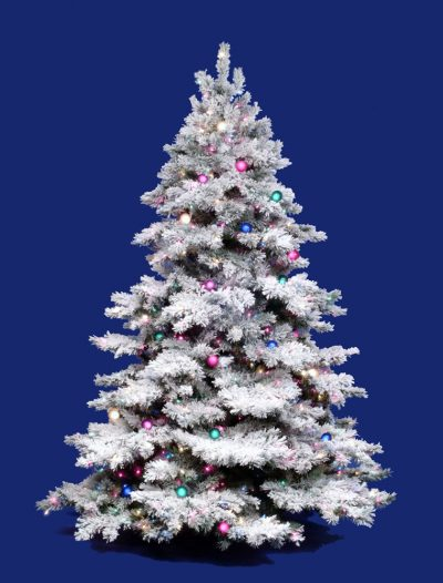 Flocked Alaskan Christmas Tree For Christmas 2014