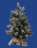 24 inch Frosted Jackson Christmas Tree with Clear Lights For Christmas 2014