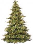 Vickerman A801676 7.5 x 63 Prelit Mixed Country 800CL (Christmas Tree)