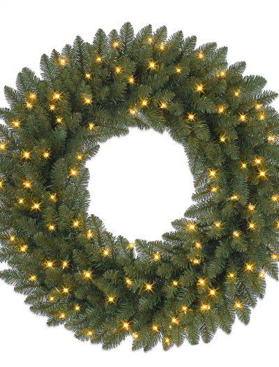 10' Berkshire Mountain Fir Artificial Christmas Garland with Clear Lights (Christmas Tree)